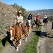 Equestrian Ride: Exploring the Natural Wonders Weir Canyon and the Overlook Trail