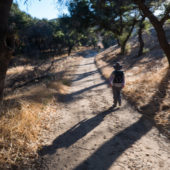 Weir Canyon Fitness Hike: Oaks to Overlook Loop